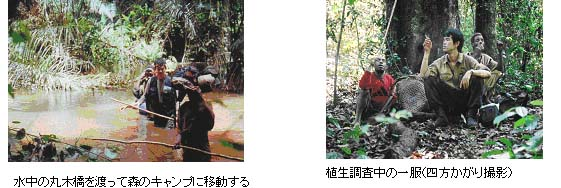 http://jambo.africa.kyoto-u.ac.jp/cgi-bin/CameroonFS/wiki.cgi?action=ATTACH&page=%A5%A2%A5%D5%A5%EA%A5%AB%C7%AE%C2%D3%CE%D3%A4%CE%CE%F2%BB%CB%C0%B8%C2%D6%B3%D8%A4%CB%A4%E0%A4%B1%A4%C6%A1%A1by+%BB%D4%C0%EE%B8%F7%CD%BA&file=4%2E2%2Ejpg