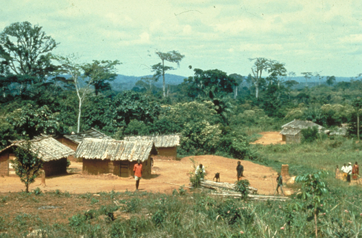 http://jambo.africa.kyoto-u.ac.jp/cgi-bin/CameroonFS/wiki.cgi?action=ATTACH&page=%A5%A2%A5%D5%A5%EA%A5%AB%C7%AE%C2%D3%CE%D3%A4%CE%CE%F2%BB%CB%C0%B8%C2%D6%B3%D8%A4%CB%A4%E0%A4%B1%A4%C6%A1%A1by+%BB%D4%C0%EE%B8%F7%CD%BA&file=5village%2Ejpg