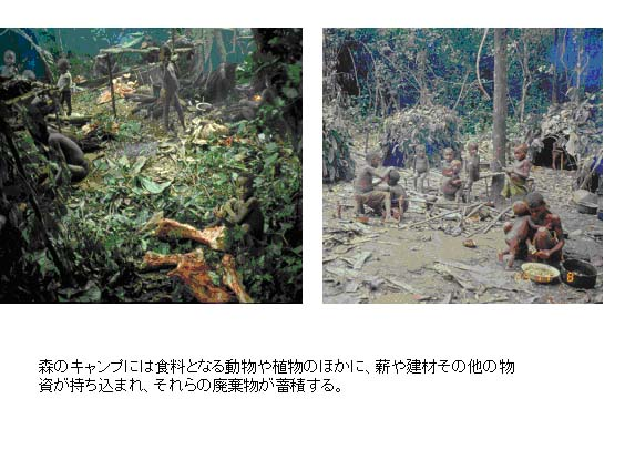 http://jambo.africa.kyoto-u.ac.jp/cgi-bin/CameroonFS/wiki.cgi?action=ATTACH&page=%A5%A2%A5%D5%A5%EA%A5%AB%C7%AE%C2%D3%CE%D3%A4%CE%CE%F2%BB%CB%C0%B8%C2%D6%B3%D8%A4%CB%A4%E0%A4%B1%A4%C6%A1%A1by+%BB%D4%C0%EE%B8%F7%CD%BA&file=7%2Ejpg