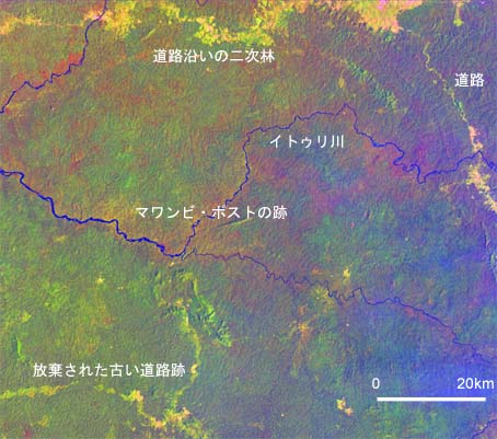 http://jambo.africa.kyoto-u.ac.jp/cgi-bin/CameroonFS/wiki.cgi?action=ATTACH&page=%A5%A2%A5%D5%A5%EA%A5%AB%C7%AE%C2%D3%CE%D3%A4%CE%CE%F2%BB%CB%C0%B8%C2%D6%B3%D8%A4%CB%A4%E0%A4%B1%A4%C6%A1%A1by+%BB%D4%C0%EE%B8%F7%CD%BA&file=Ituri%2Ejpg