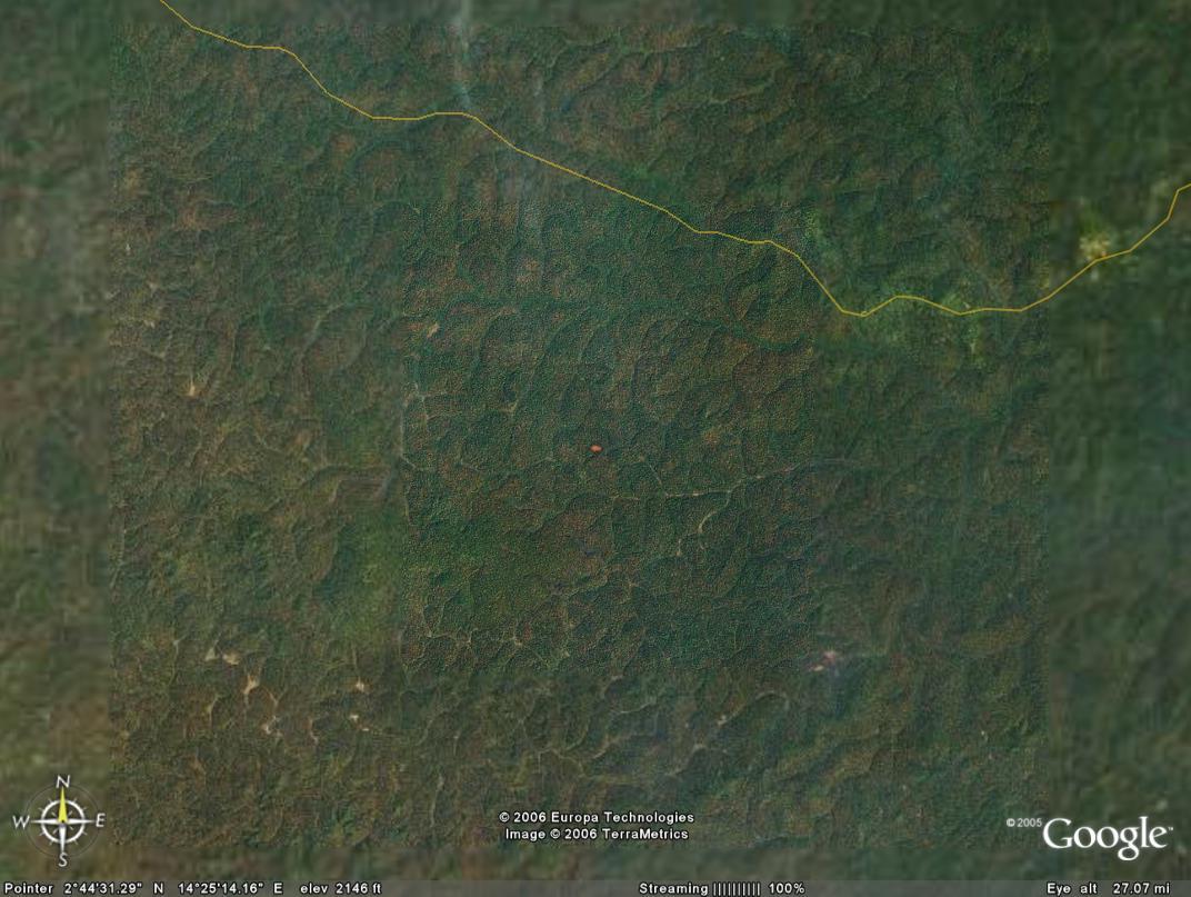 http://jambo.africa.kyoto-u.ac.jp/cgi-bin/CameroonFS/wiki.cgi?action=ATTACH&page=%B1%D2%C0%B1%B2%E8%C1%FC%A4%AB%A4%E9&file=Ekok1%2Ejpg