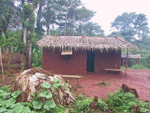 http://jambo.africa.kyoto-u.ac.jp/cgi-bin/CameroonFS/wiki.cgi?action=ATTACH&page=%B5%F0%B4%E4%A1%A9&file=IMG%5F1354%2EJPG