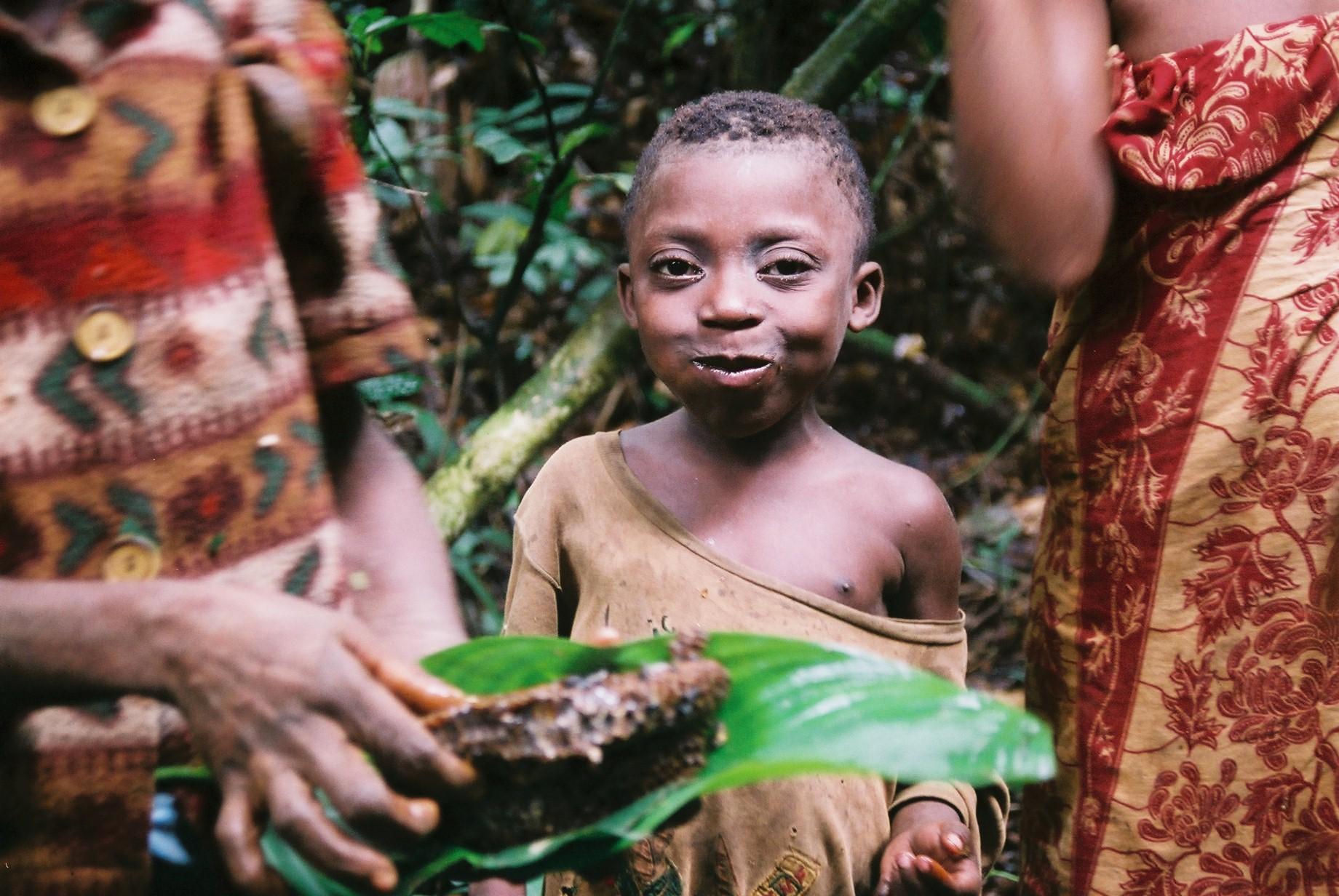 http://jambo.africa.kyoto-u.ac.jp/cgi-bin/CameroonFS/wiki.cgi?action=ATTACH&page=%BB%CD%CA%FD%E4%C0&file=shikata3%2Ejpg