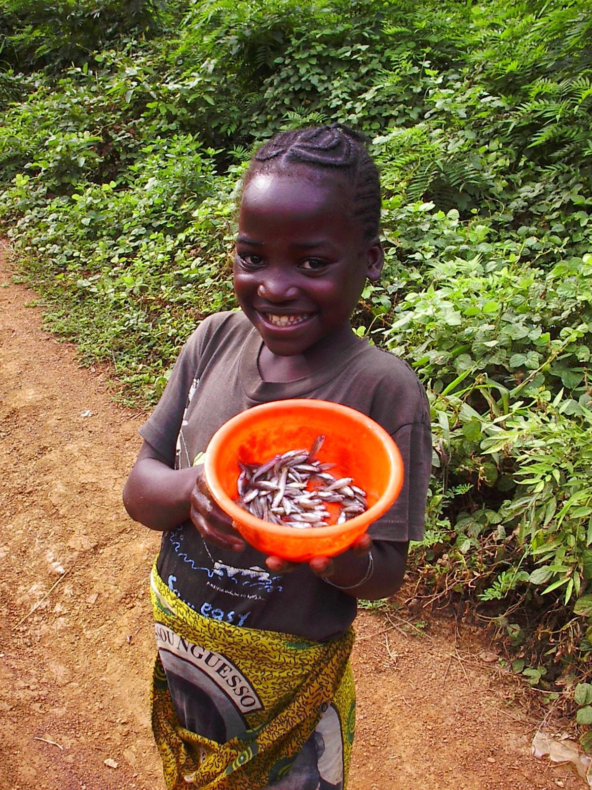 http://jambo.africa.kyoto-u.ac.jp/cgi-bin/CameroonFS/wiki.cgi?action=ATTACH&page=%BC%CC%BF%BF%B4%DB%28%C6%B0%B2%E8%A4%A2%A4%EA%21%29&file=Beyene%2EJPG