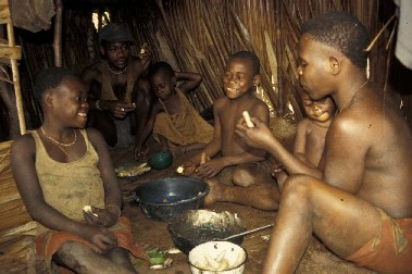 http://jambo.africa.kyoto-u.ac.jp/cgi-bin/CameroonFS/wiki.cgi?action=ATTACH&page=%BF%A9%BB%F6%C9%F7%B7%CA&file=6hattori%2Ejpg