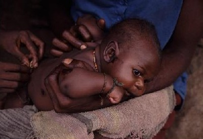 http://jambo.africa.kyoto-u.ac.jp/cgi-bin/CameroonFS/wiki.cgi?action=ATTACH&page=%BF%B9%A4%CE%BB%D2%B6%A1%A4%BF%A4%C1&file=3hayashi%2Ejpg