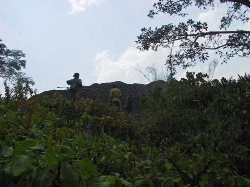 http://jambo.africa.kyoto-u.ac.jp/cgi-bin/CameroonFS/wiki.cgi?action=ATTACH&page=Ekok+Edanbawa&file=IMG%5F2139%2EJPG
