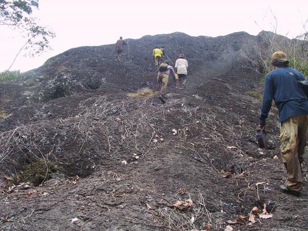 http://jambo.africa.kyoto-u.ac.jp/cgi-bin/CameroonFS/wiki.cgi?action=ATTACH&page=Ekok+Edanbawa&file=IMG%5F2141%2EJPG