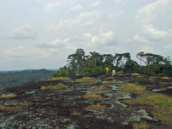 http://jambo.africa.kyoto-u.ac.jp/cgi-bin/CameroonFS/wiki.cgi?action=ATTACH&page=Ekok+Edanbawa&file=IMG%5F2150%2EJPG